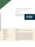 Aternative Candida Albicans Lifestile