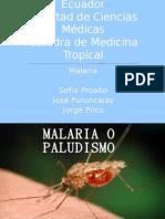 Exposición malaria