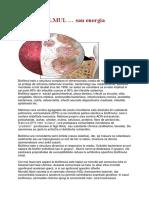 BIOFILMUL… sau energia microbilor.docx