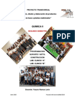 Reporte Proyecto Transversal Quimica II