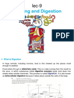 Lec 12 Digestive system.ppt