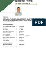 Curriculum Polo Ruiz Jaime Anibal