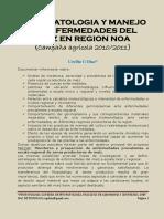 sintomatologia y manejo de enfermedades del maiz en region noa.pdf