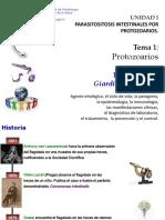 Tema 1 Protozoarios 1.2 Giardiasis