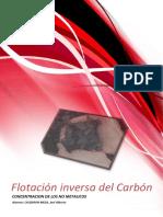 FLOTACION INVERSA CARBON.docx