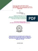 Lakshman - Thesis.pdf