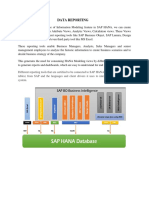 SAP Data Reporting Documentation