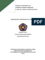 288346950-LP-CKD.doc