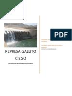Represa Gallito Ciego Informe