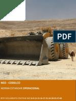 NEO-norma-estandar-codelco-pdf.pdf