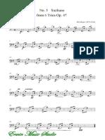 2659Violoncello Max Reger, String Trio No.5 Siciliano Op.47