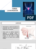Tumores laríngeos.pptx