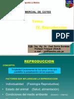 4. REPRODUCCION DE CUYES