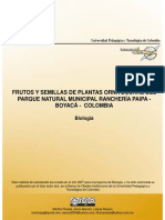 Semillas plantas ornitocoras