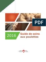 Guide de soins aux poulettes 2016