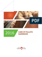 Care of Pullets Guidebook 2016