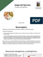 Fisiología Del Ejercicio - Fuentes Energeticas