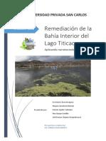 Remediación de La Bahía Interior Del Lago Titicaca