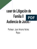 Taller de Litigación de Familia II (Audiencia de Juicio)