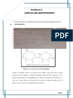 P4 Dulzor de Azucares