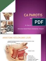 61923251-CA-PAROTIS