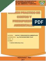 Examen Practico de Costos y Presupuestos Ambientales