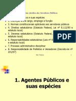Agentes_Públicos