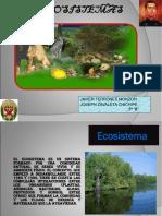 19682867-ecosistema