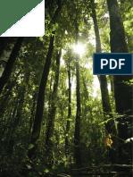 Bhp Sustainability Report