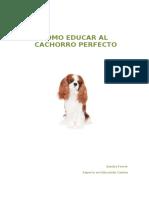 EduCar Cachorro