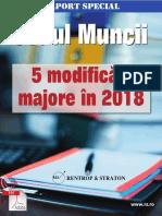 Raport-special-5-modificari-majore-in-codul-muncii_final180208164537.pdf