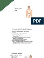 Endocrine Sysyem [Autosaved]
