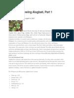 Guide to Growing Alugbati