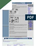 PDF 06 03 Texturas Metamorfico