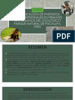Identificación de Parásitos Gastrointestinales en Primates No Humanos