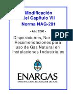NAG_201_-_CAPITULO_VII.pdf