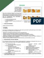 Perforacion-Seleccion de triconos.docx