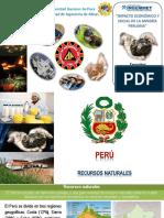 Impacto de La Minería Peruana Ing Henry Luna