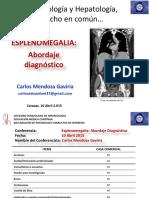 Mendoza Esplenomegalia1 (1)
