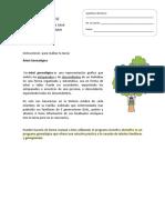 Árbol de La Salud CFI