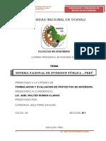 182405168 Monografia Sobre El Snip en El Peru