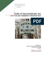 Williamstown ADA Draft Report