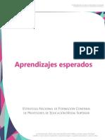 Aprendizajes esperados.pdf