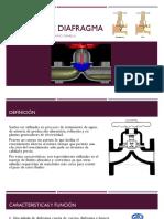 Válvula de Diafragma Exposición (1)
