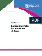 Potassium Intake Printversion