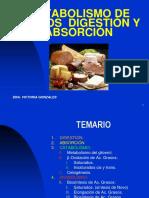 Metabolismo de Lipidos 3º Semestre - 2
