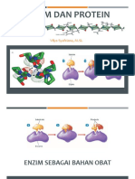 4. Enzim&Protein Rev