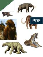 Animales Pleistoceno