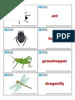 kids-flashcards-bugs-3.pdf