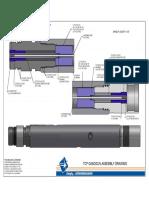 TCP GASGUN (06-01-2012)